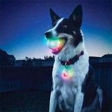 YaniPetDogTrainingelettronicoLED 7 colori lampeggiante luminoso denti cane rettifica palla Brillare giocattolo interattivo