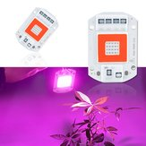 AC110V/AC220V 20W 30W 50W Full Spectrum Red & Blue LED Grow Light Chip for Indoor Plants Flowers