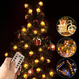 2M 3M 4M Acorn Pine Cones LED String Light Fairy Lamp with Remote Control Patio Yard Garden Christmas Decor