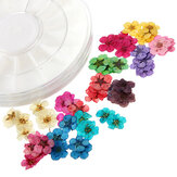 Dry Flower Acrylic UV Gel Nail Art Decoration Wheel DIY