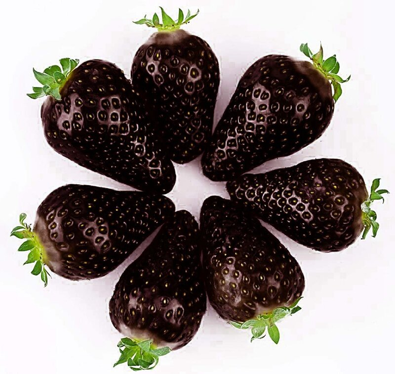 Egrow 200 PCS Black Strawberry Seeds Fresh Exotic Tasty Fruit Potted Seed Garden Bonsai Plant